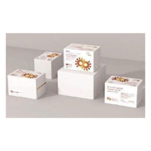 Key Gen Bio Tech Antibody Test Kit